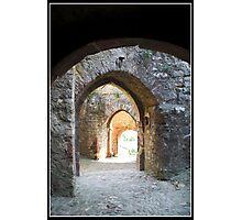 Through the gates Photographic Print