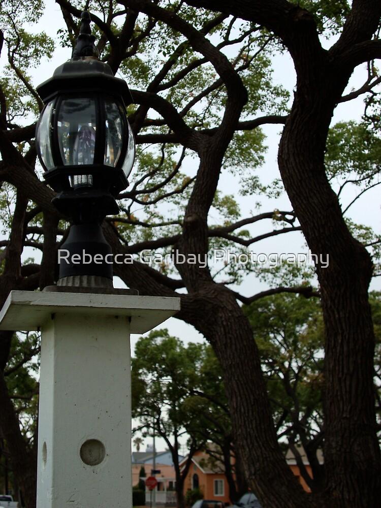 Lamp post by Rebecca Garibay Photography