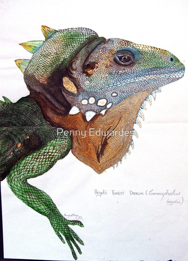 Forest Dragon by Penny Edwardes