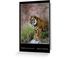 Tiger - Cool Stuff Greeting Card