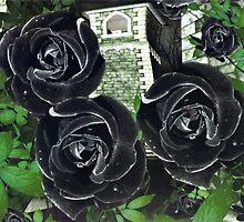 Phantom's Garden by Cindy Ritter
