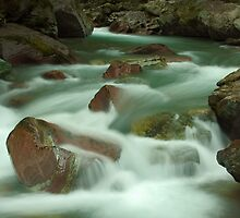 Avalanche Creek, Glacier NP by Fred Frank