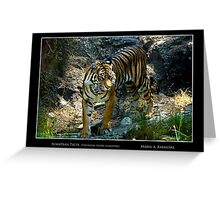 Sumatran Tiger - Cool Stuff Greeting Card