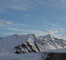Sunrise in Denali National Park by Robert Phelps