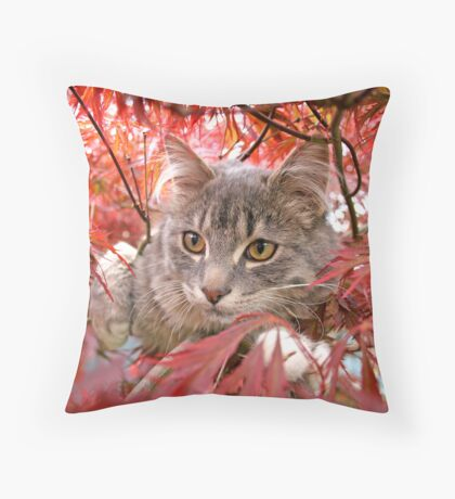 Cat in the Maple Throw Pillow