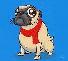 For all you Puggalos by joehavasy