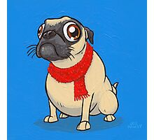 For all you Puggalos Photographic Print