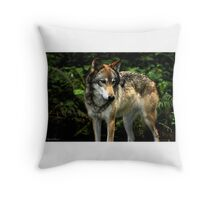 Curious Wolf (Canis lupus) Throw Pillow