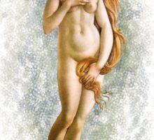 Venus in Training Sticker