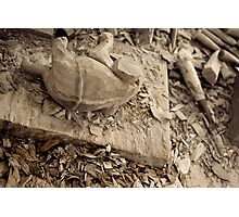 Carvings Photographic Print
