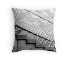 Step up to the plate Throw Pillow