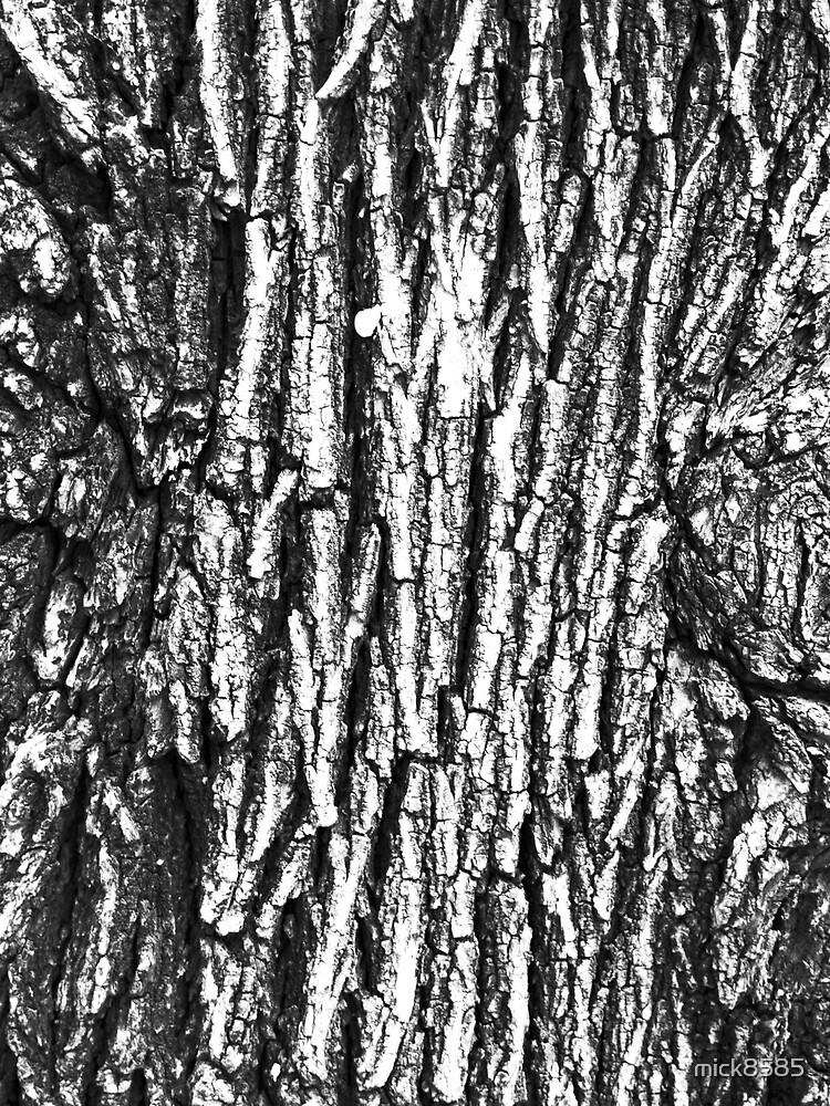 elm tree by mick8585