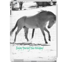Paso Fino Grey White Horse Running in The Snow iPad Case/Skin