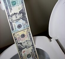Flushing Money Away by Maria Dryfhout