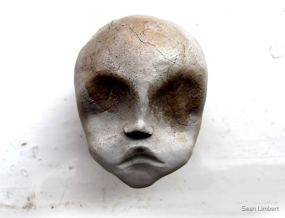 NEW HEAD by Sean Limbert