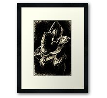 Amaryllis in Contrast - Silver Framed Print