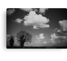 Monochrome Fen Canvas Print