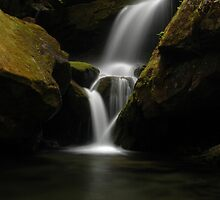 lower portion of Grotto Falls by Kevin Price