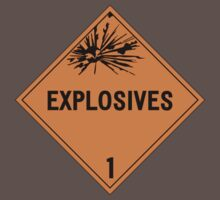 HAZMAT Class 1: Explosives by Ruben Wills