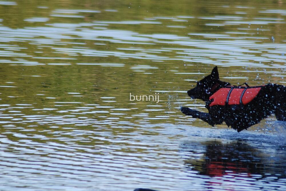 Diving In! by bunnij
