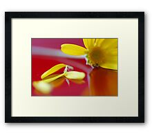 love me not Framed Print