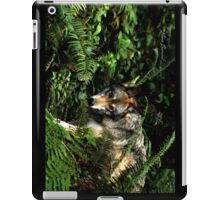 Forest Wolf - Cool Stuff iPad Case/Skin