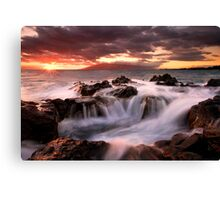 Tropical Cauldron Canvas Print