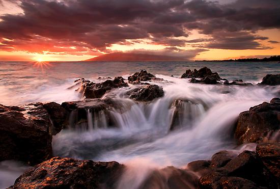 Tropical Cauldron by DawsonImages