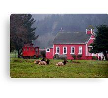 School of Elk Canvas Print