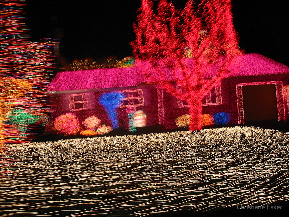 Lights in Motion by Christiane Esker