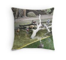 Water Birds  Throw Pillow