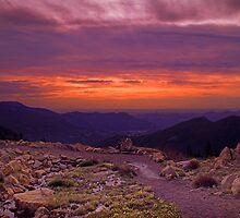 Alpine Tundra Sunrise by John  De Bord Photography