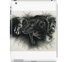 Hershey iPad Case/Skin