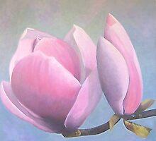 "Magnolia x saulangeana ""Lenni"" by Beth White"