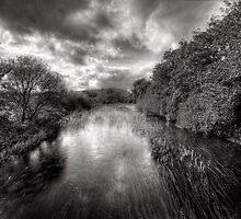 A Dark Stream by Kevin Hart