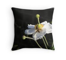 Anemone flower Throw Pillow
