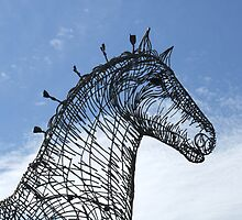 working horse 2 by Alan Findlater