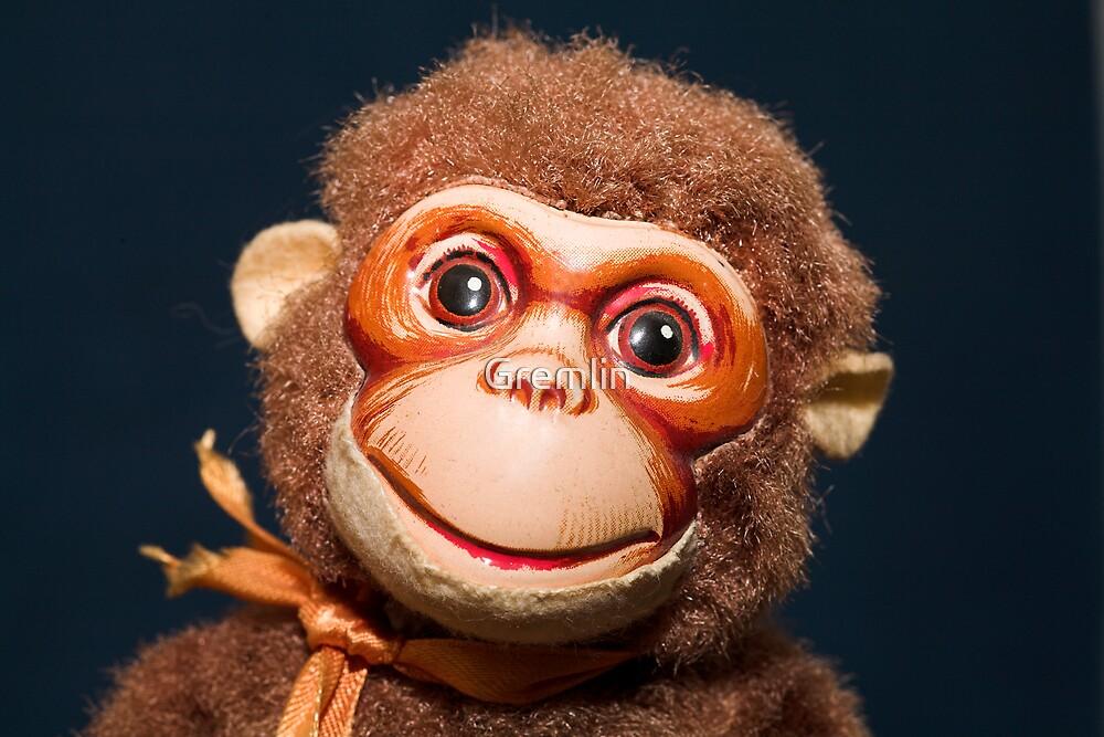 Old Monkey by Claudia Reitmeier