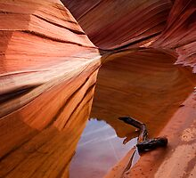 Eye of the Wave by DawsonImages