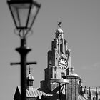 Liver Building in Black and White by Manuel Gonçalves