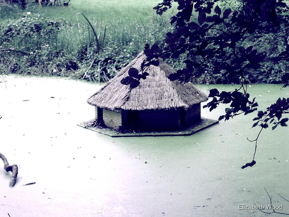 Duck House by Elizabeth Wood