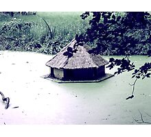 Duck House Photographic Print