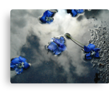 Fallen Delphiniums - Series 2 Canvas Print
