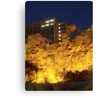 Looking up at the Mighty Kangaroo Point Cliffs. Canvas Print