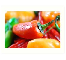 Hot Peppers Art Print