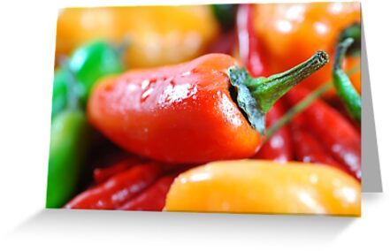 Hot Peppers by Karin  Hildebrand Lau