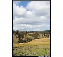 Valley Paddock Photographic Print