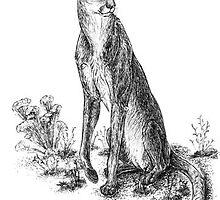 Miracinonyx trumani - Running puma of North American Pleistocene by Tiffany Miller