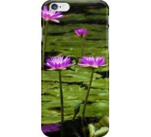 Waterlilies at Mt. Coot-tha iPhone Case/Skin