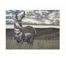 Prairie Flyer Art Print